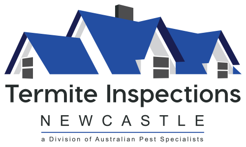 Termite Inspections Newcastle
