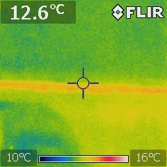 Active Termites Thermal image